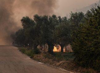 Μεγάλη φωτιά σε δύο μέτωπα στην Κερατέα