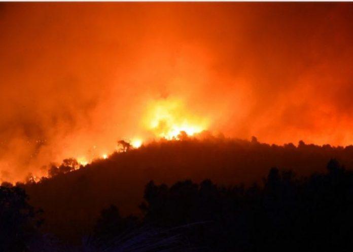 Μάχη με τις φλόγες στην Εύβοια
