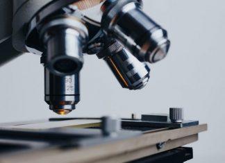 Αμερικανοί επιστήμονες: 5 ημέρες κατά μέσο όρο η ασυμπτωματική φάση επώασης του κοροναϊού
